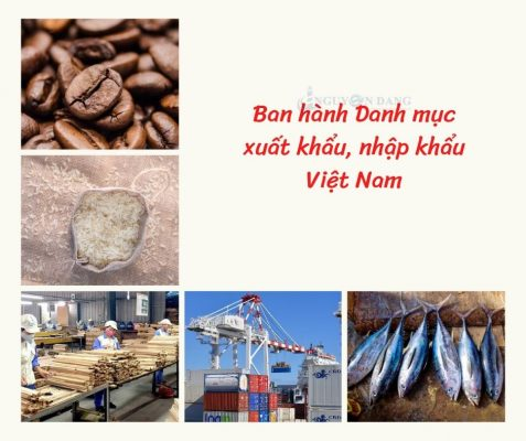 ban hành danh mục XNK Việt Nam